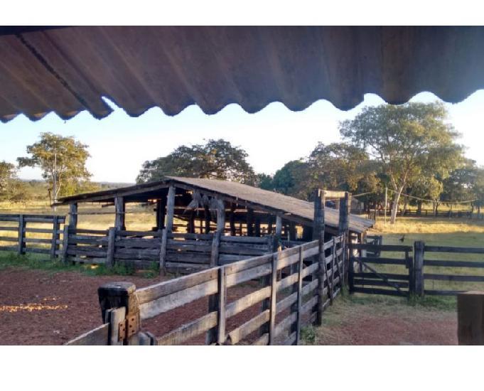 Fazenda 160 alqueires (774,4 hectares) Pontal MT