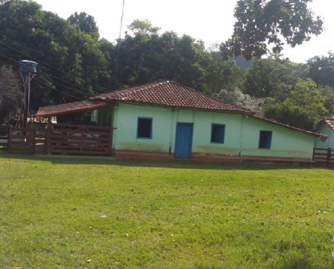Fazenda 55 alqueires 266.20 hectares - itapuranga-go