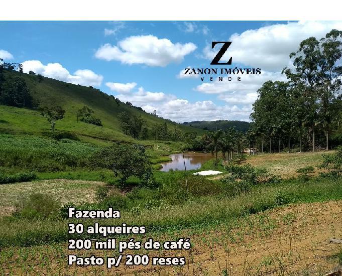 Fazenda com 145,2 hectares 200 mil pés de café, 4