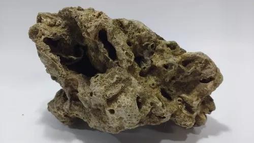 Rocha aquário marinho ciclídeo africano in natura 5kg