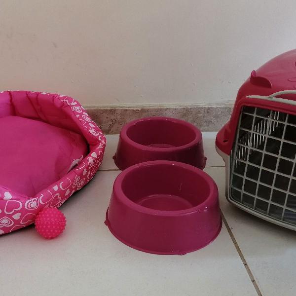 Kit para cachorro pequeno porte