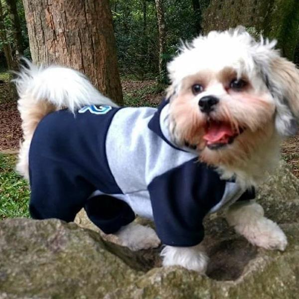 Roupa cachorro roupinha cachorro macacão roupa pet