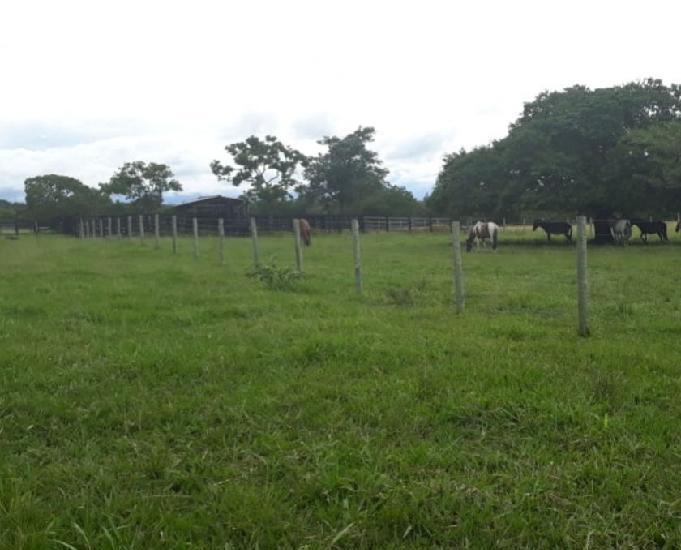 Fazenda com 660 hectares na estrada de caceres