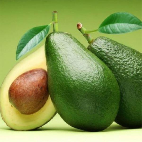 Leo vegetal de abacate 100 ml