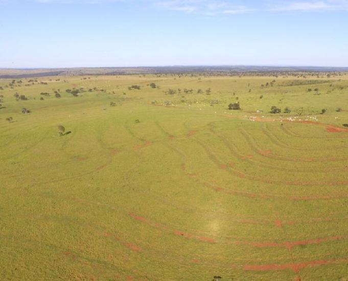 Excelente fazenda com 2.583 hectares na região de camapuã