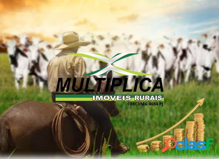 Fazenda a venda em uberlândia mg 91,96 hectares.