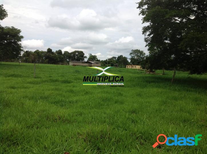 Fazenda uberlandia mg 49 ha 10,12 alq. montada