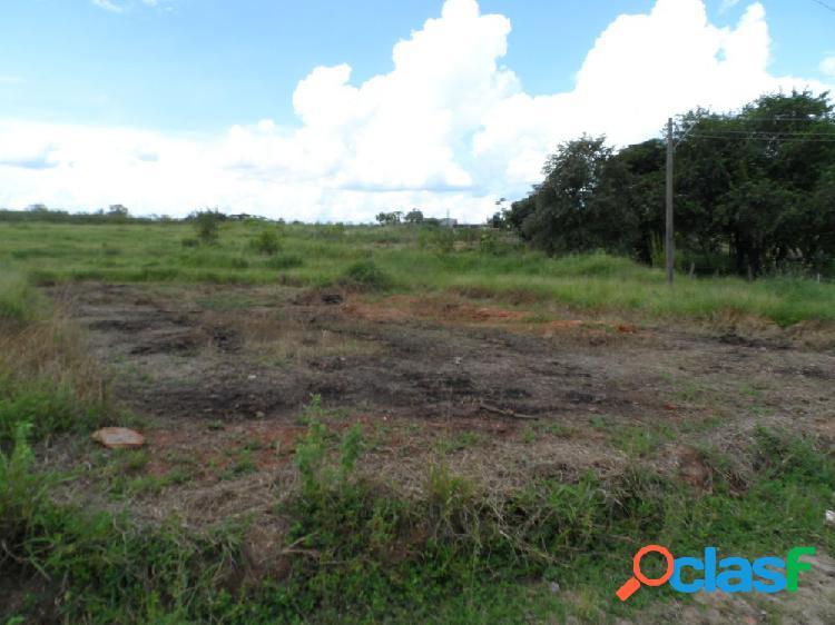 Terreno bairro universo - terra - terreno a venda no bairro universo - araçatuba, sp - ref.: mm90432