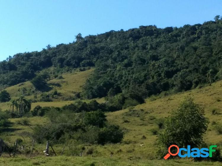 Área de terra para sítio - sítio a venda no bairro figueira grande - imarui, sc - ref.: mc061