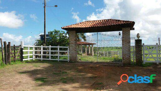 Fazenda em alagoas com 1.500 tarefas - fazenda a venda no bairro área rural - são sebastião, al - ref.: pl002