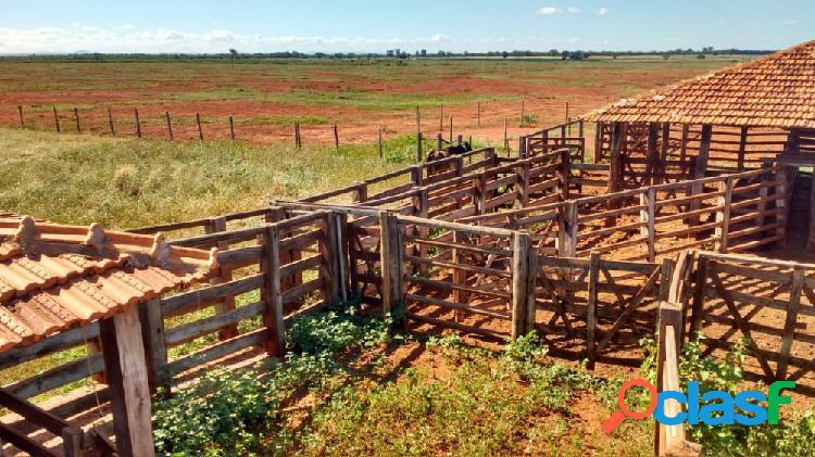 Fazenda á venda em janaúba - fazenda a venda no bairro zona rural - janaúba, mg - ref.: sl80385