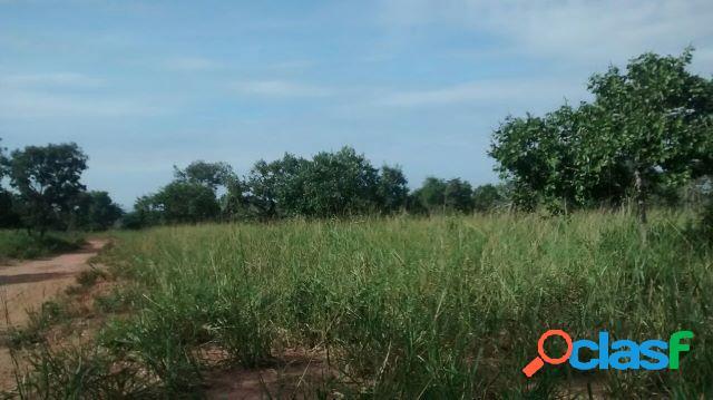 Fazenda em joao pinheiro mg - fazenda a venda no bairro zona rural - joao pinheiro, mg - ref.: li74286