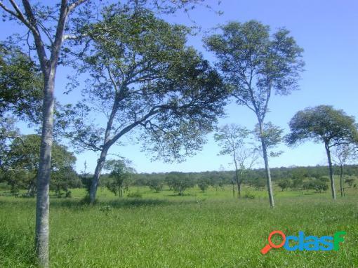 Fazenda no município de ubaí/mg - fazenda a venda no bairro zona rural - ubaí, mg - ref.: li89019
