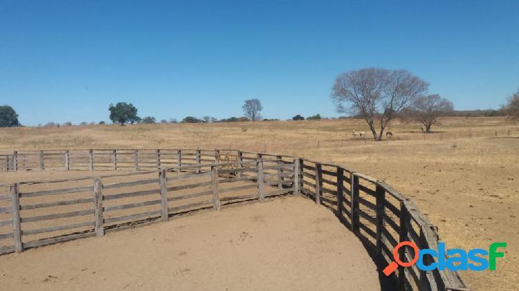 Oportunidade fazenda 11.500 ha em juvenília - mg - fazenda a venda no bairro zona rural - juvenília, mg - ref.: sl40808