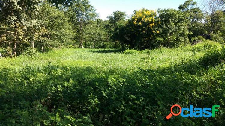 Sítio em brasilia de minas - sítio a venda no bairro zona rural - brasilia de minas, mg - ref.: sl75542