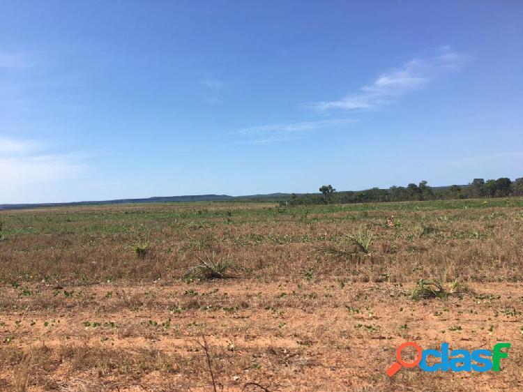 Fazenda madrid 1500 ha com 600 ha mecanizados - fazenda a venda no bairro rural - novo acordo, to - ref.: montoy