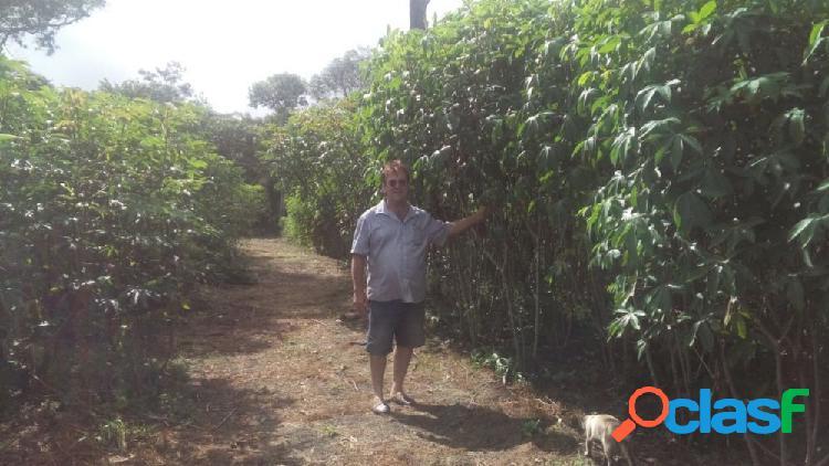 Área rural a 60 km de macapa - ap - rural a venda no bairro kamaipi - mazagão, ap - ref.: se33037