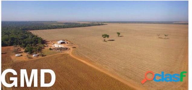 FAZENDA 998 HA, COM 500 HA DE SOJA EM BRIANORTE - MT - Fazenda a Venda no bairro Rural - Br-242 - Brianorte (nova Maringá), MT - Ref.: PLINIO-SOJA