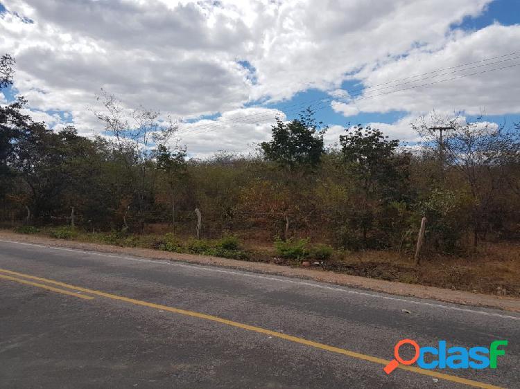 Fazenda a venda no bairro pi 257 - redenção do gurguéia, pi - ref.: lu1788