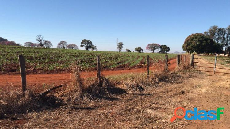 Sítio na região de ribeirão preto - sítio a venda no bairro área rural - tambaú, sp - ref.: fa33606
