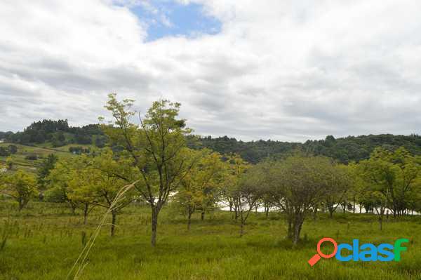 Chácara fazenda souza - chácara a venda no bairro fazenda souza - caxias do sul, rs - ref.: pa017