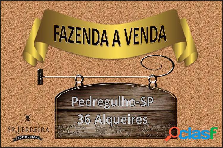 Fazenda a venda pedregulho (bairro do estreito) - fazenda a venda no bairro rural - pedregulho, sp - ref.: faz-002