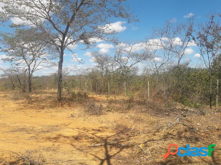 Terreno para chácara - paineiras - sítio a venda no bairro chácaras paineiras - montes claros, mg - ref.: te001