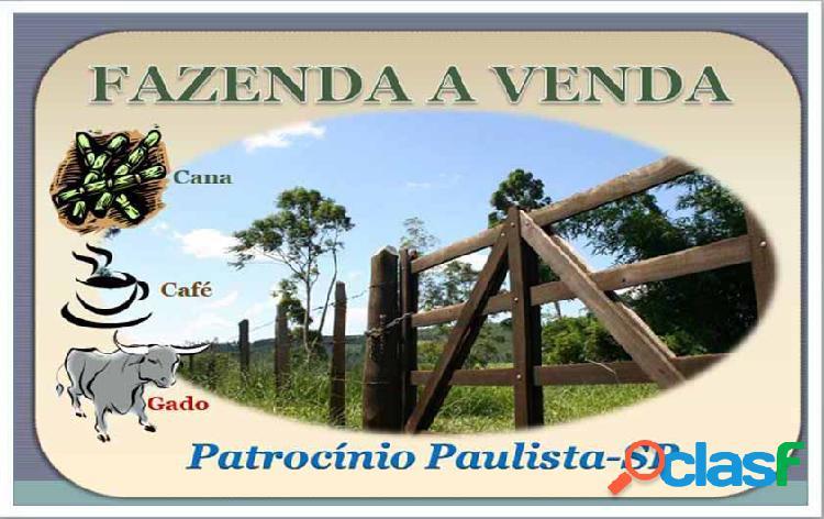 Fazenda a venda em patrocínio paulista-sp - fazenda a venda no bairro rural - patrocínio paulista, sp - ref.: faz-015
