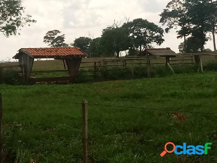 Vende-se fazenda 850 hectares ms. - fazenda a venda no bairro centro - paranaíba, ms - ref.: fs0027