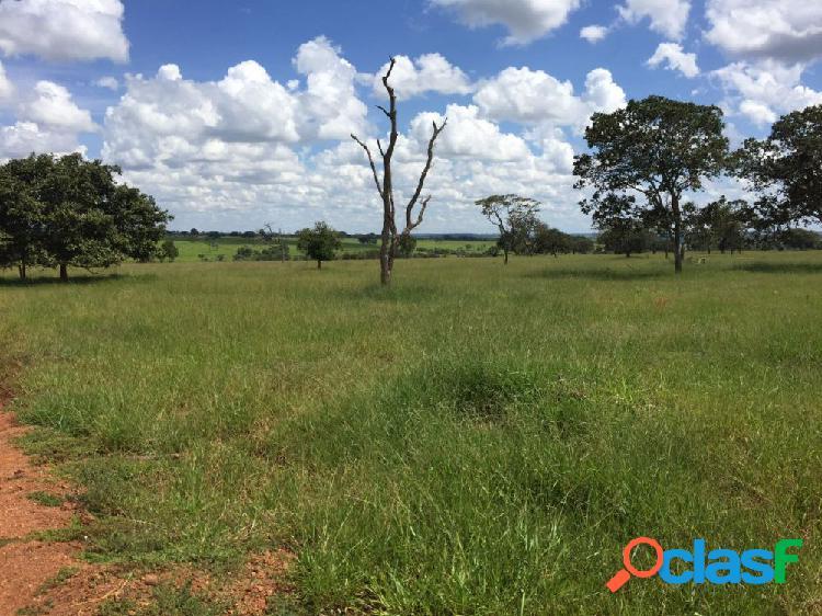 Vende-se fazenda de 125 hectares próximo a uberlândia - mg - fazenda a venda no bairro centro - prata, mg - ref.: fs0026