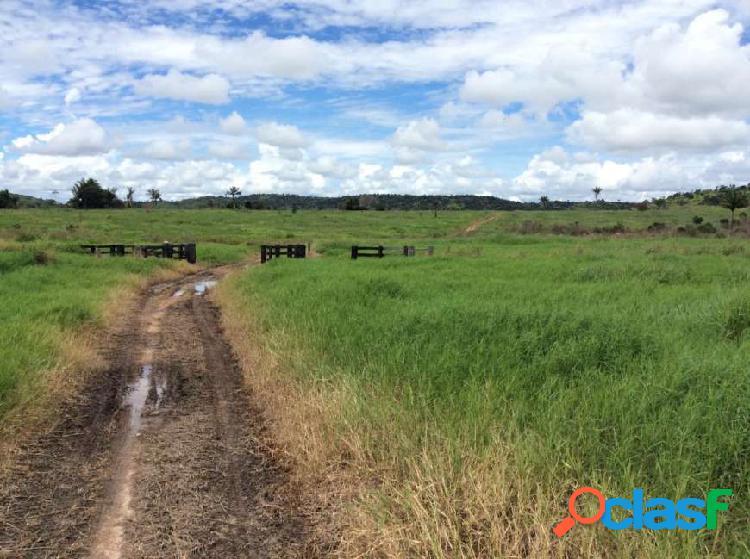 Vende-se fazenda de 543 alqueires em nova monte verde-mt - fazenda a venda no bairro zona rural - nova monte verde, mt - ref.: fs0085