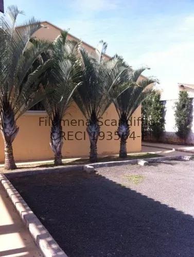 Bosque das palmeiras, campinas