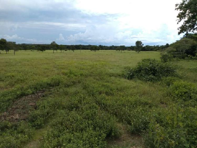 Fazenda/sítio à venda, 2323200 m² por r$ 3.000.000 cod.
