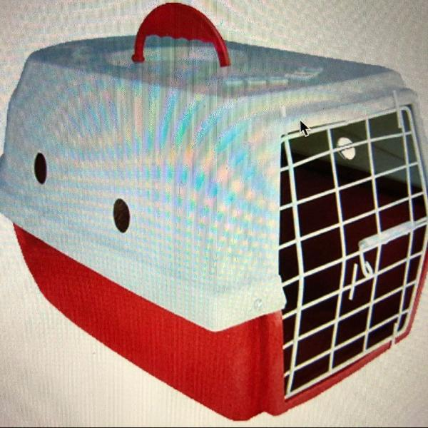 Caixa para transporte de cães dog lar