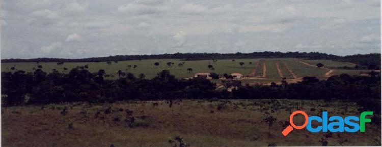 Fazenda em capinópolis -,,, por 12.6 milhões à venda