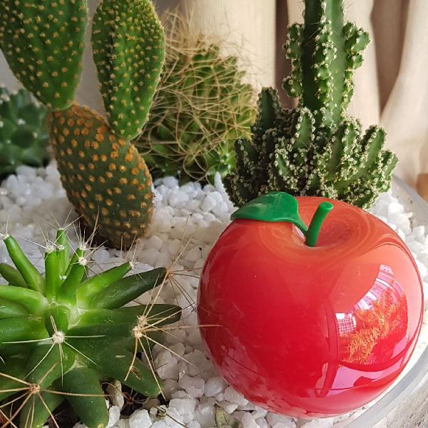 Hidratante para mãos maçã coreia