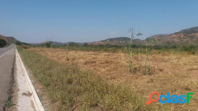 Terreno - venda - naque - mg - naquinho zona rural