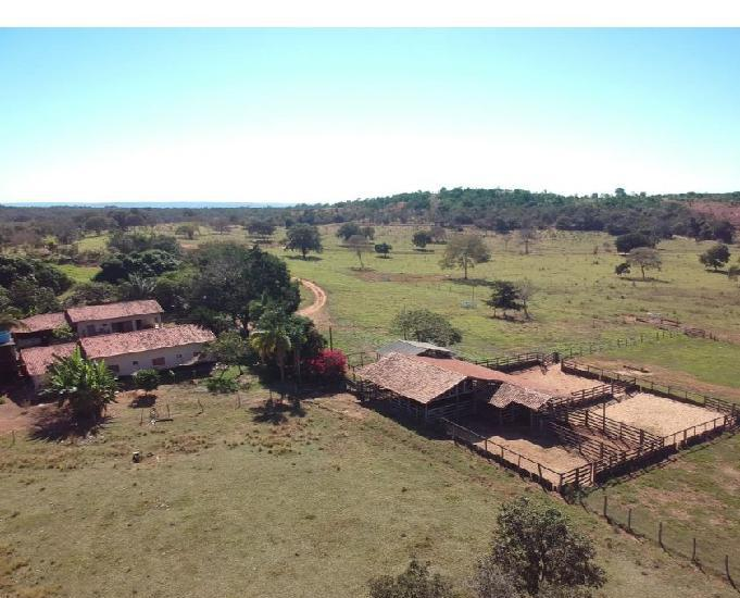 Fazenda 200 alqueires (968 ha)-torixoréu-mt