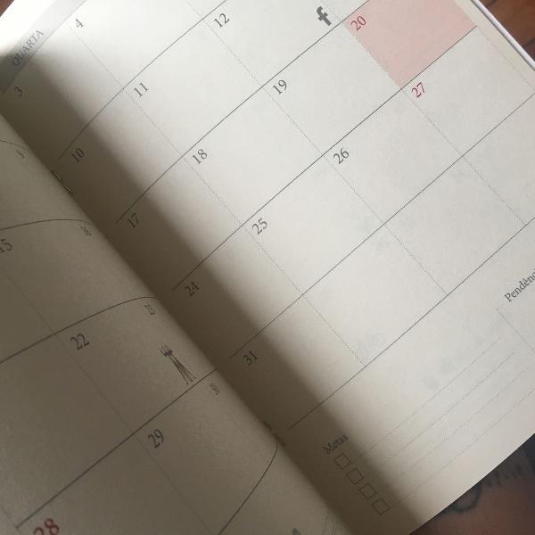 Planner mensal novo