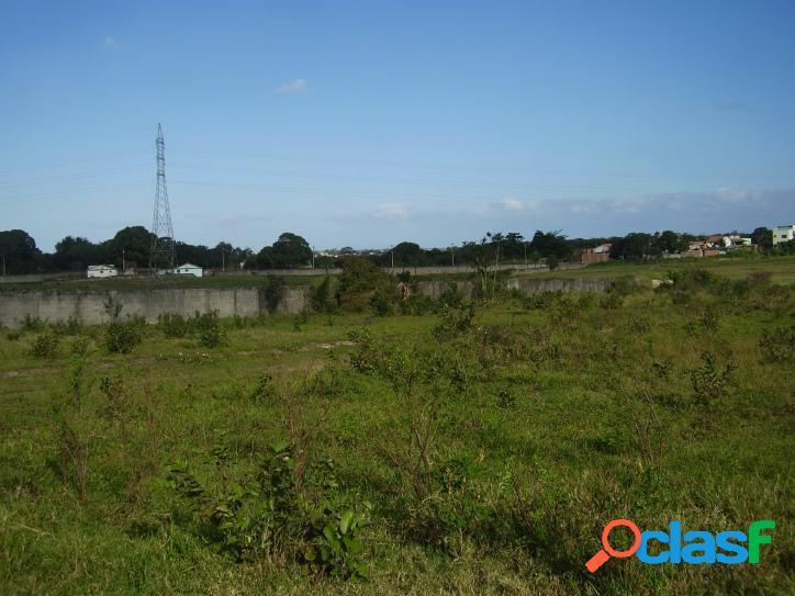 Lote/Terreno para venda possui 6000 metros quadrados em Fazendinha - Araruama - RJ. 3