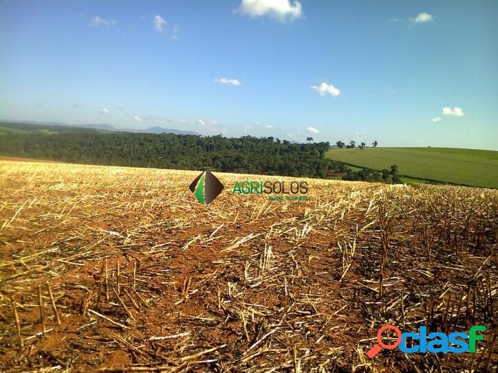 Fazenda 1375 há café e agricultura,