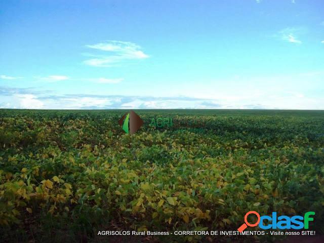 Fazenda 1.631ha soja 12 anos