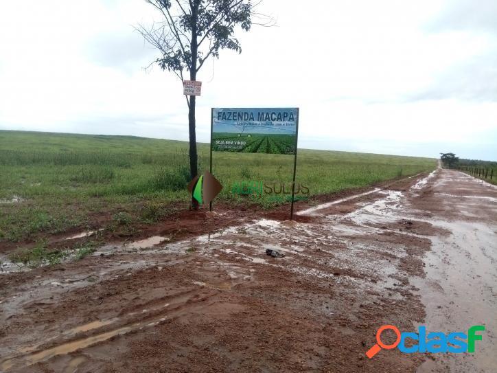 Fazenda 2.950 ha p/ irrigação/ produção de sementes