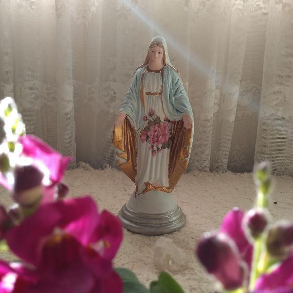Nossa senhora das graças floral