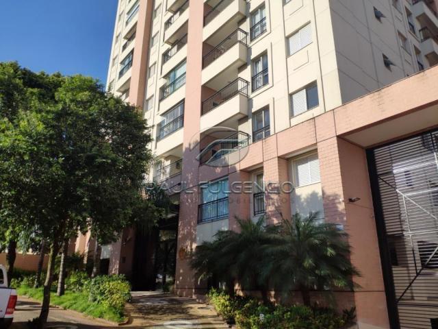 Apartamento para alugar com 2 dormitórios em jardim agari,