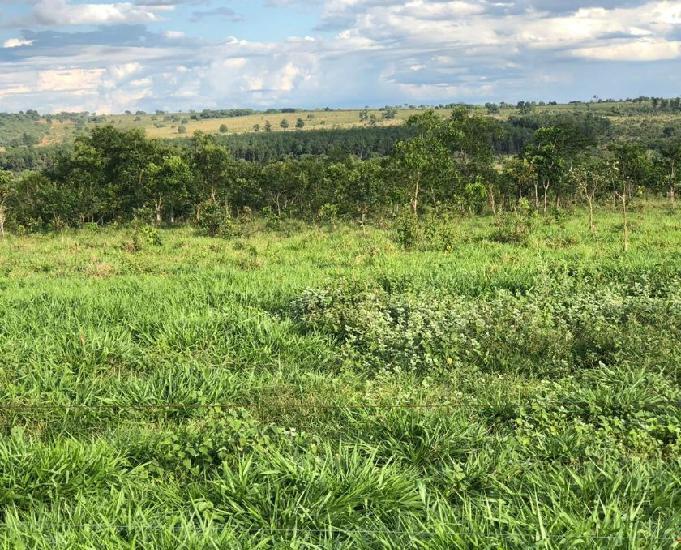 Fazenda com 2.350 hectares região de ribas do rio pardo ms