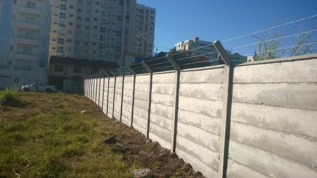 Muros meneguelli