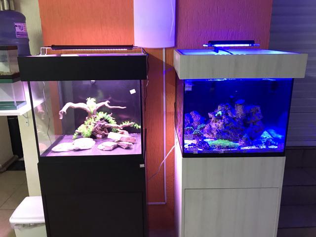 Aquario marinho ou doce nano 100 lts novo pronta entrega