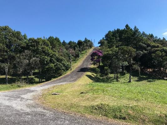 Terreno em condômino rural