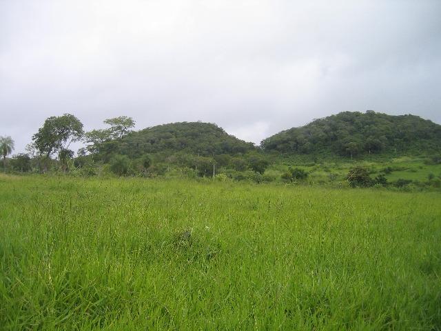 Fazenda de 700 hectares em porto murtinho, 14 km do asfalto!